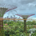 Singapore  Companies all US listings