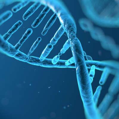 Biotechnology extensive list