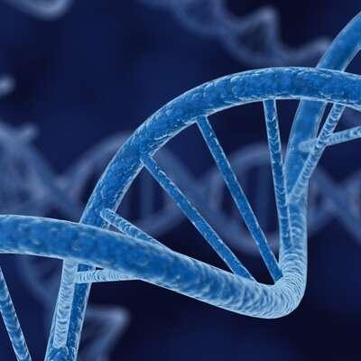 Biotechnology Breakthroughs ETFs